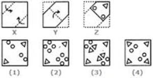 Image: Example of a paper folding test