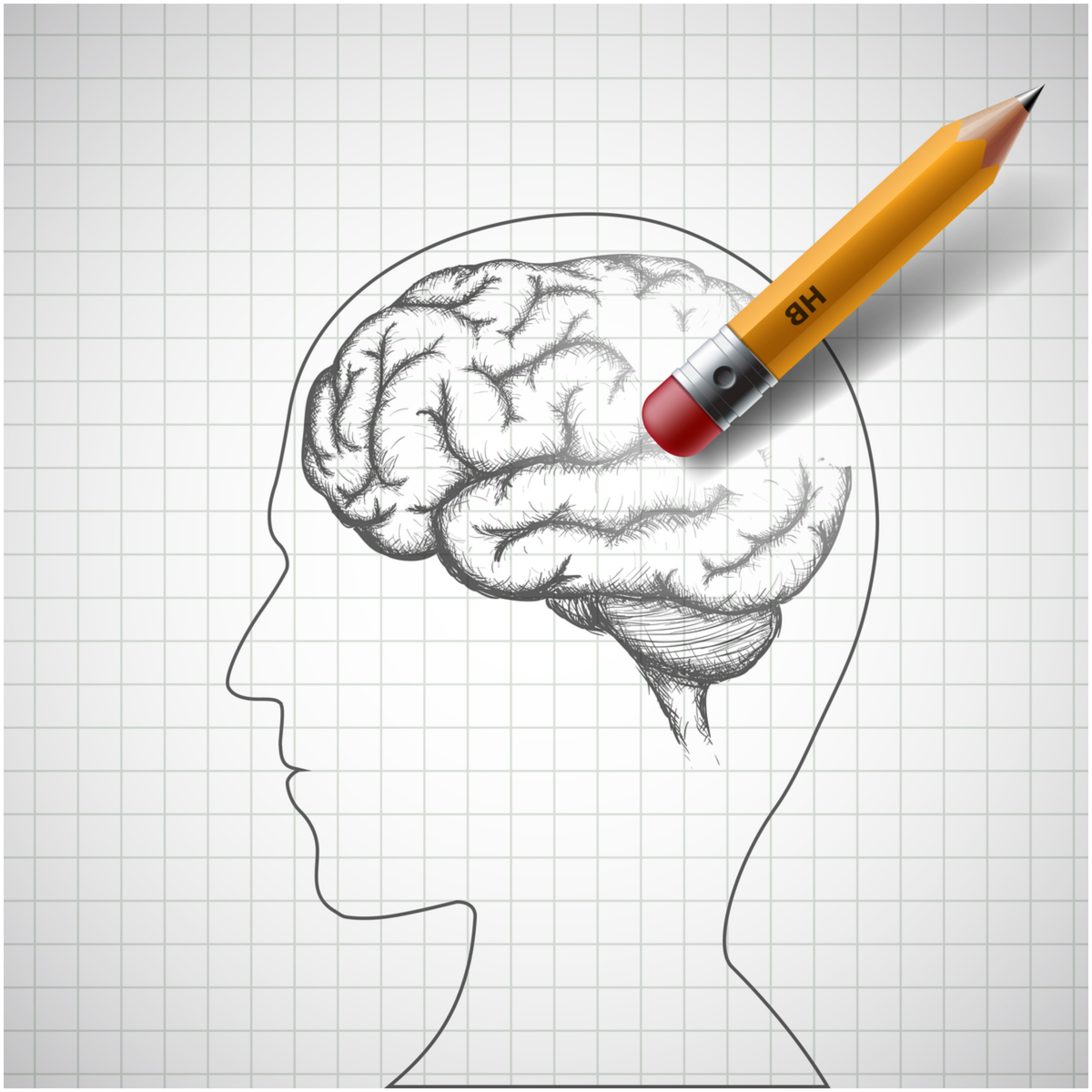 brain with pencil and eraser