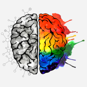 Brain with left hemisphere in black and white, right hemisphere in rainbow colours