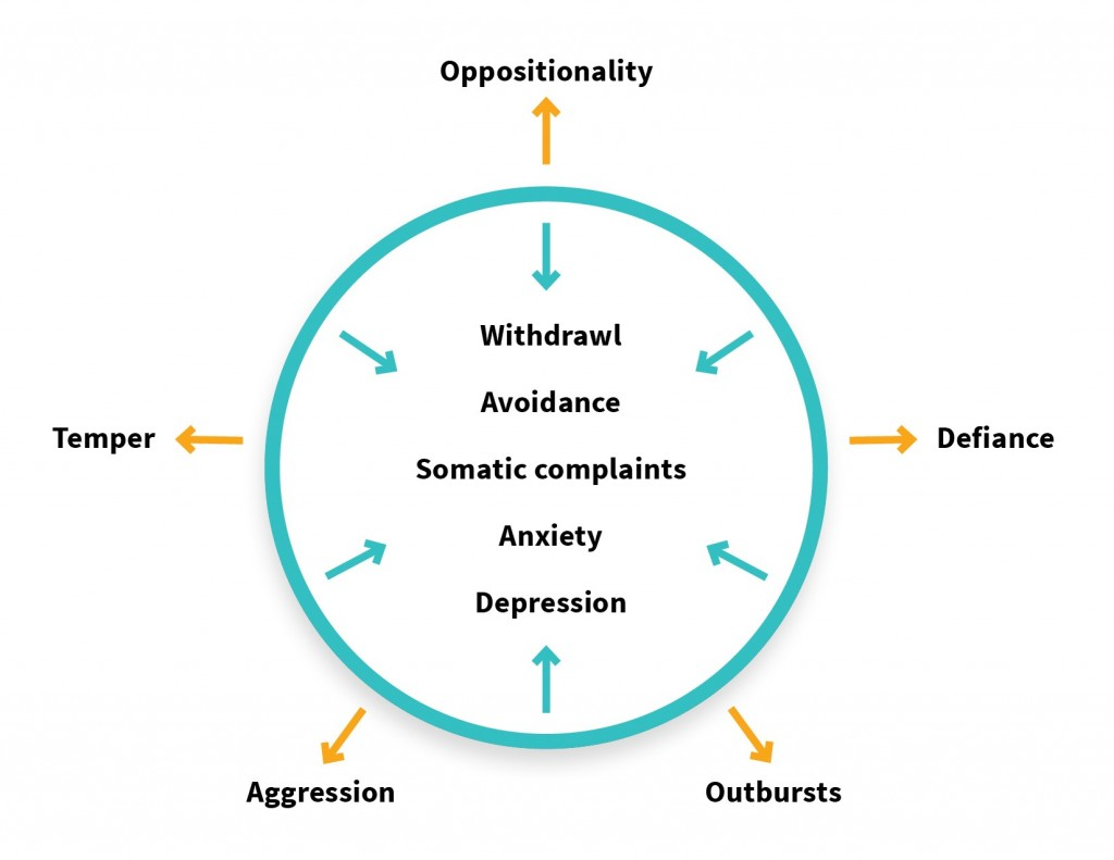 Diagram showing the internalized behaviours within a circle, and the externalized behaviours outside the circle