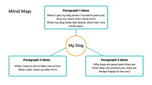 Mind map of essay ideas about your dog.