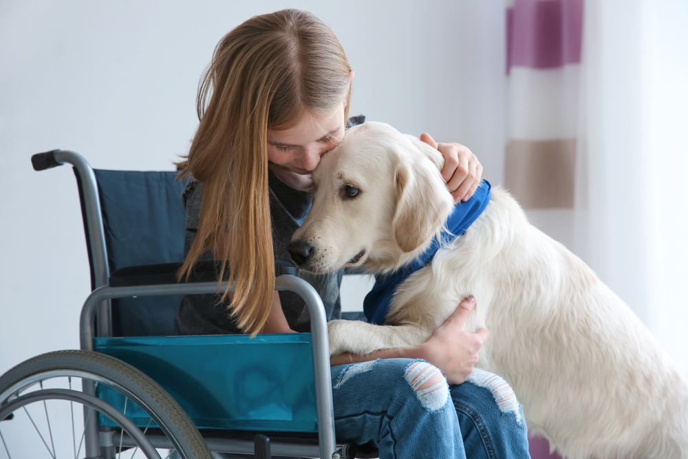 Students with Service Animals: 10 Things to Know as a Teaching Professional